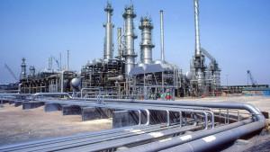 arslan oil plant-6-l