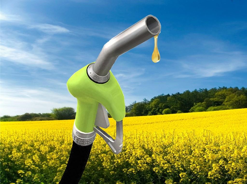 biodiesel Arslan2015